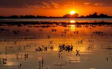 Pantanal - águas